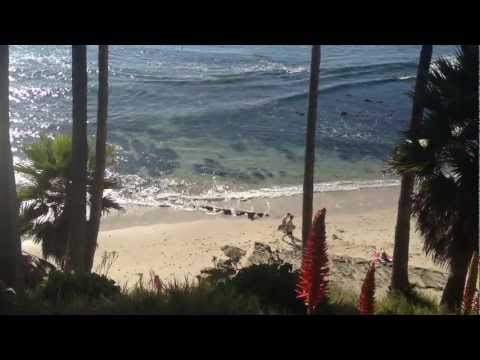 Free Download Typical Laguna Beach December T-shirt And Flip Flop Weather. Mp3 dan Mp4