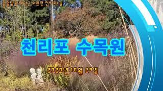 [free down] 천리포수목원  (1) 2020년 …