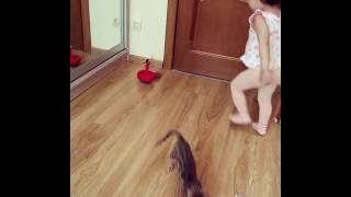 бенгальская кошка и ребенок - Lantana Fly -