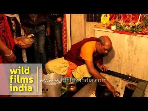 Priest performing the rituals of Maha Shivratri