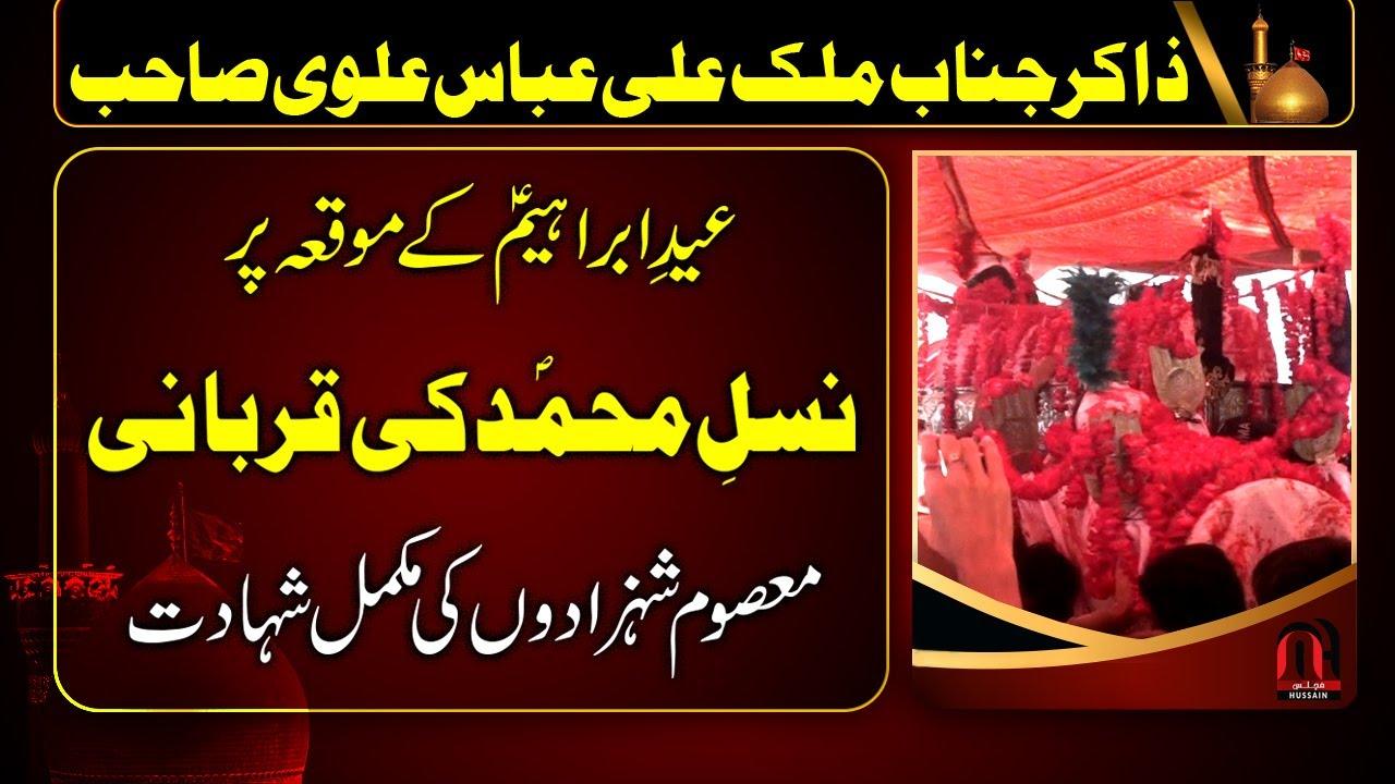 Qurbani | Eid-e-Ibrahimi Par Nasl-e-Muhammad (PBUH) ki Qurbani | Zakir Ali Abbas Alvi | 11 Zulhaj