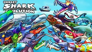 ALL 33 SHARKS & SKINS (HUNGRY SHARK EVOLUTION)