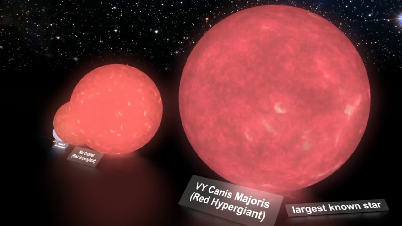 The largest star - VY Canis Majoris - YouTube