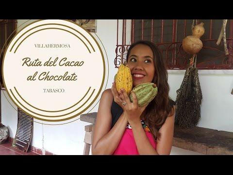 LA RUTA DEL CACAO AL CHOCOLATE | VILLAHERMOSA , TABASCO