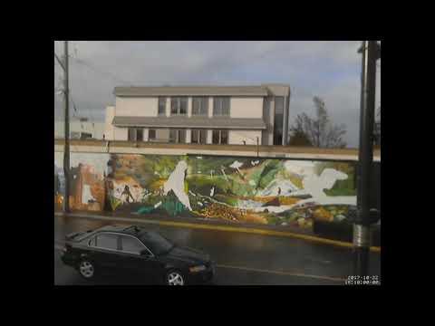Campbell River Mural Timelapse