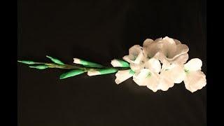 DIY Gladiolen aus Krepppapier / Gladiolen of crepe paper