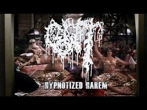 GUT - Hypnotized Harem feat. Maty of GUTALAX (Official Video)