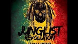 JUNGLIST REVOLUTION - WallyenS (eRreDeKa) 2k14