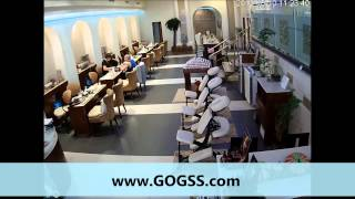 GSS - 1.3MP MINIDOME IP CAMERA (NAIL SALON)