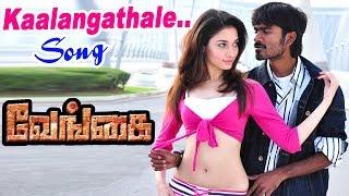 Venghai | Vengai | Tamil Movie Video Songs | Kaalangathale Video Song | Dhanush Songs | Tamanna Song