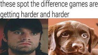 Winter soilder memes | Bucky memes | marvel memes | hot memes on Avengers | endgame memes