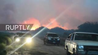 Argentina  Agricultural emergency declared as wildfire ravages million hectares in La Pampa