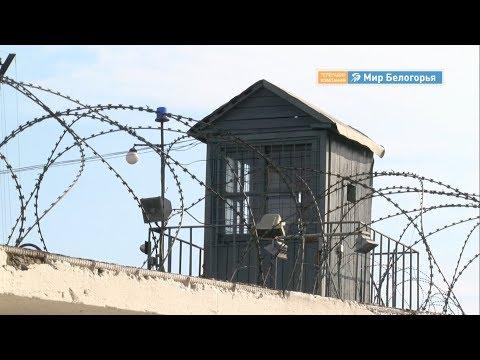 Кокорин и Мамаев вышли на свободу