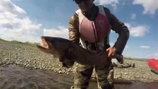 8. Покласти рибу в спину (2)