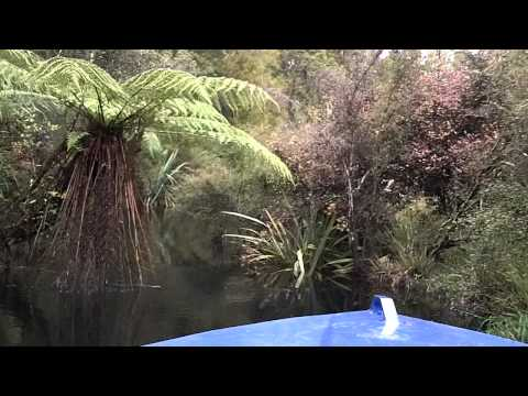 Jet Boating The Nerger River - Haast - West Coast - New Zealand
