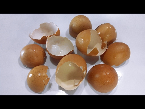 You will never throw away an egg shell when you know all this things!