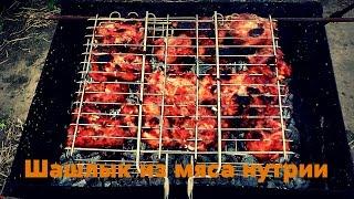 Шашлык из  мяса нутрии