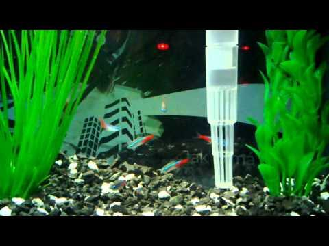 Moje nové akvárium
