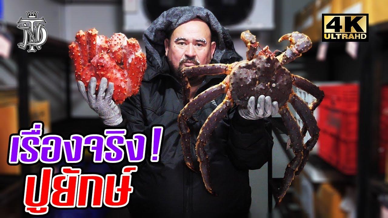 เรื่องจริง! ปูยักษ์ | True story! Giant crab
