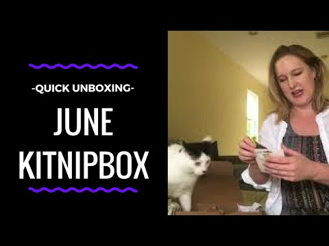 KITNIPBOX Unboxing w/ Cats // June 2018