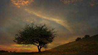 Relax music: Shadowplay (Map of the warm night)- Tim Story