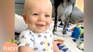 HAVING A BAD DAY? Watch This Cuteness! | Funny Moments | Cute videos