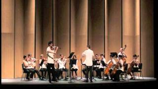 A. Panufnik Violin Concerto 2nd and 3rd movements