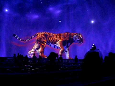 Bubble Show (Tiger) - City of Dreams - Macau
