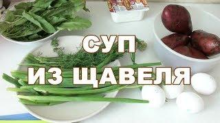 Суп из щавеля. как приготовить супик с щавелем видео рецепт