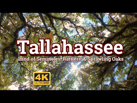 Tallahassee  - Land of Seminoles, Rattlers, and Sprawling Oaks