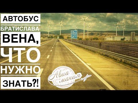 Как добраться из Братиславы в Вену на автобусе   #Авиамания