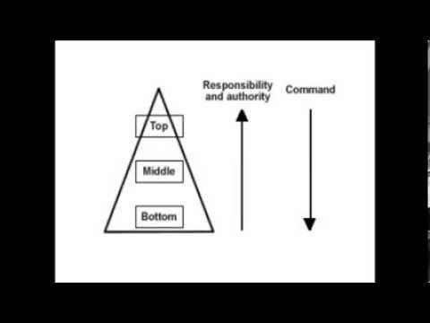 Organizational Structure - 2.2