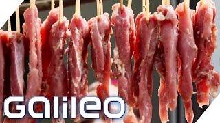 Skurrile Gerichte: Hundewürger   Galileo Lunch Break
