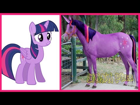 My Little Pony All Characters IN REAL LIFE 👉@WANA Plus