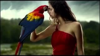Красивый клип - животные и девушки