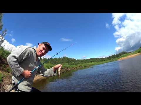 Рыбалка южнее Толмачево у реки Луги в начале июля 2018