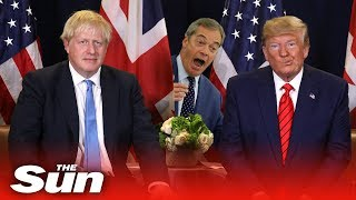 Trump calls for a Boris-Farage election pact