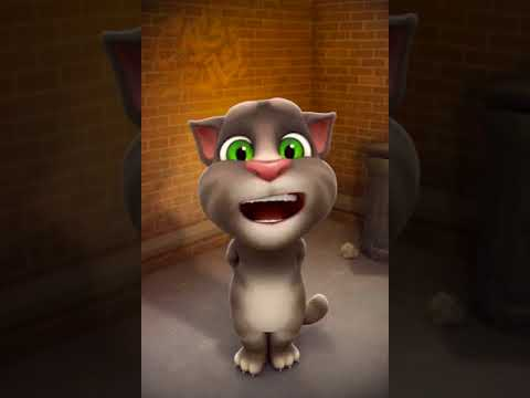 Me and Talking Tom Catron