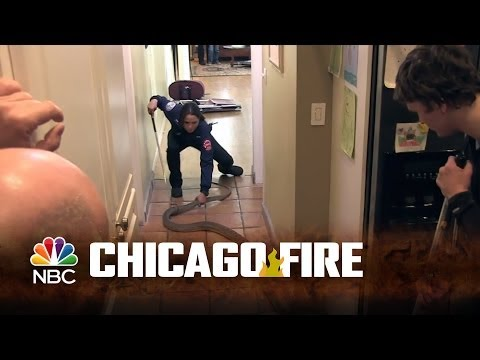 Fireside Chats with Dawson and Shay: Episode 3  Chicago Fire