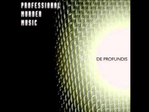 Professional Murder Music - One