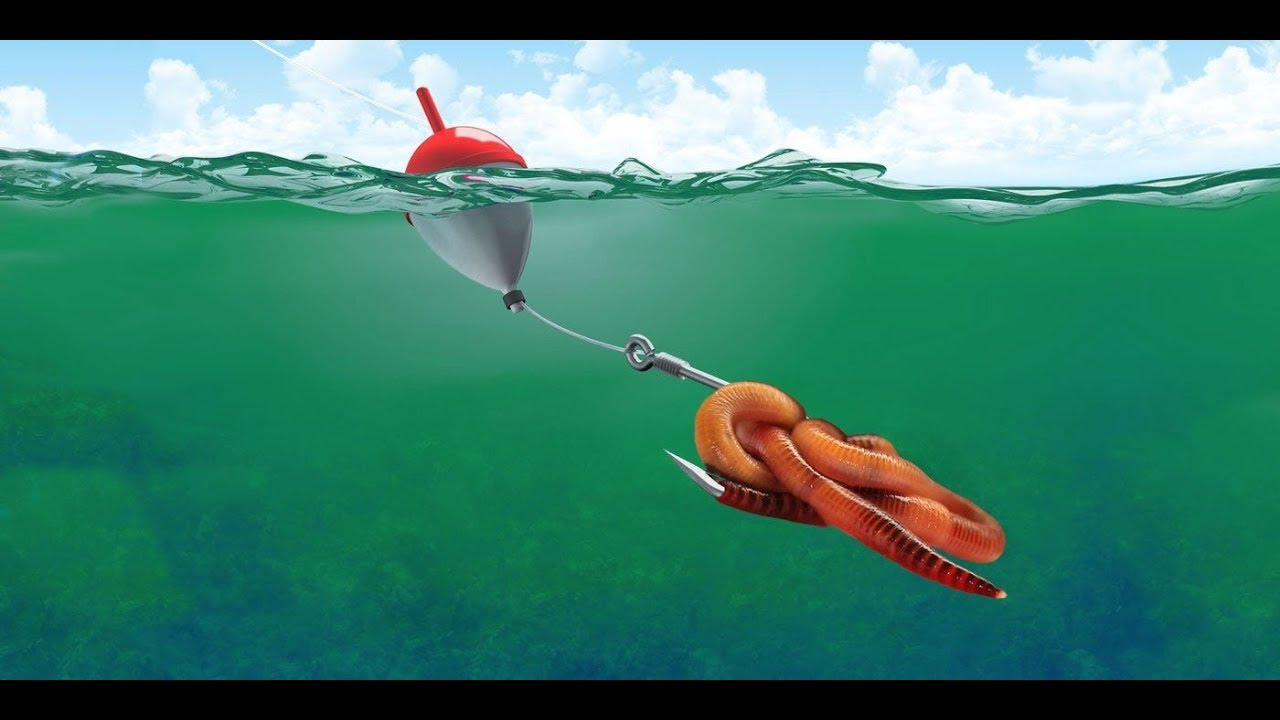 #Убийца #Карася   #Супер насадка #Рыбалка_на_дендробена_венета