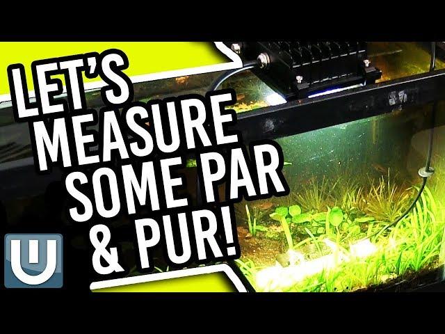 Seneye Reef Monitor And Measuring PAR - Too Much Fun!