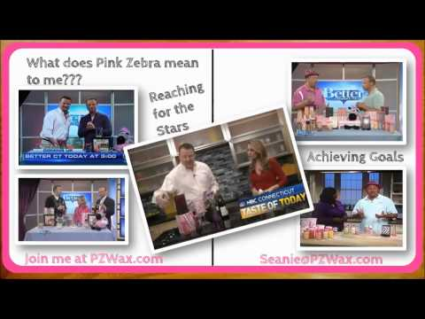 Pink Zebra Review | How to Succeed with Pink Zebra (MUST SEE) from Pink Daddy