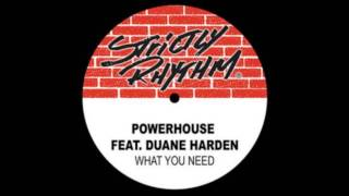 Powerhouse feat. Duane Harden - What U need (Full Intention power mix)