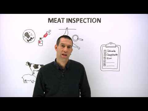 Modernising meat inspection methods