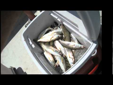 Speckled Trout Fishing in Mobile Bay with Capt. Chuck Sellers