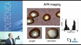 SFCM 09_2 Propiedades mecánicas de virus