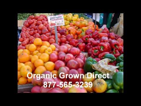 Organic Food Coral Springs Farmers Market 877-565-3239