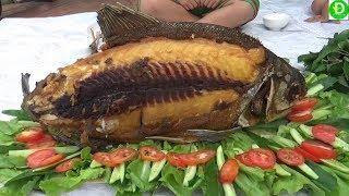 Giăng câu sông Cái Bé dính con cá khủng rủ cả xóm ăn mừng l  Catch big fish in the river