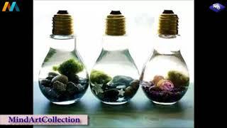 Creative Ideas For GARDEN Decoration and Design Part3